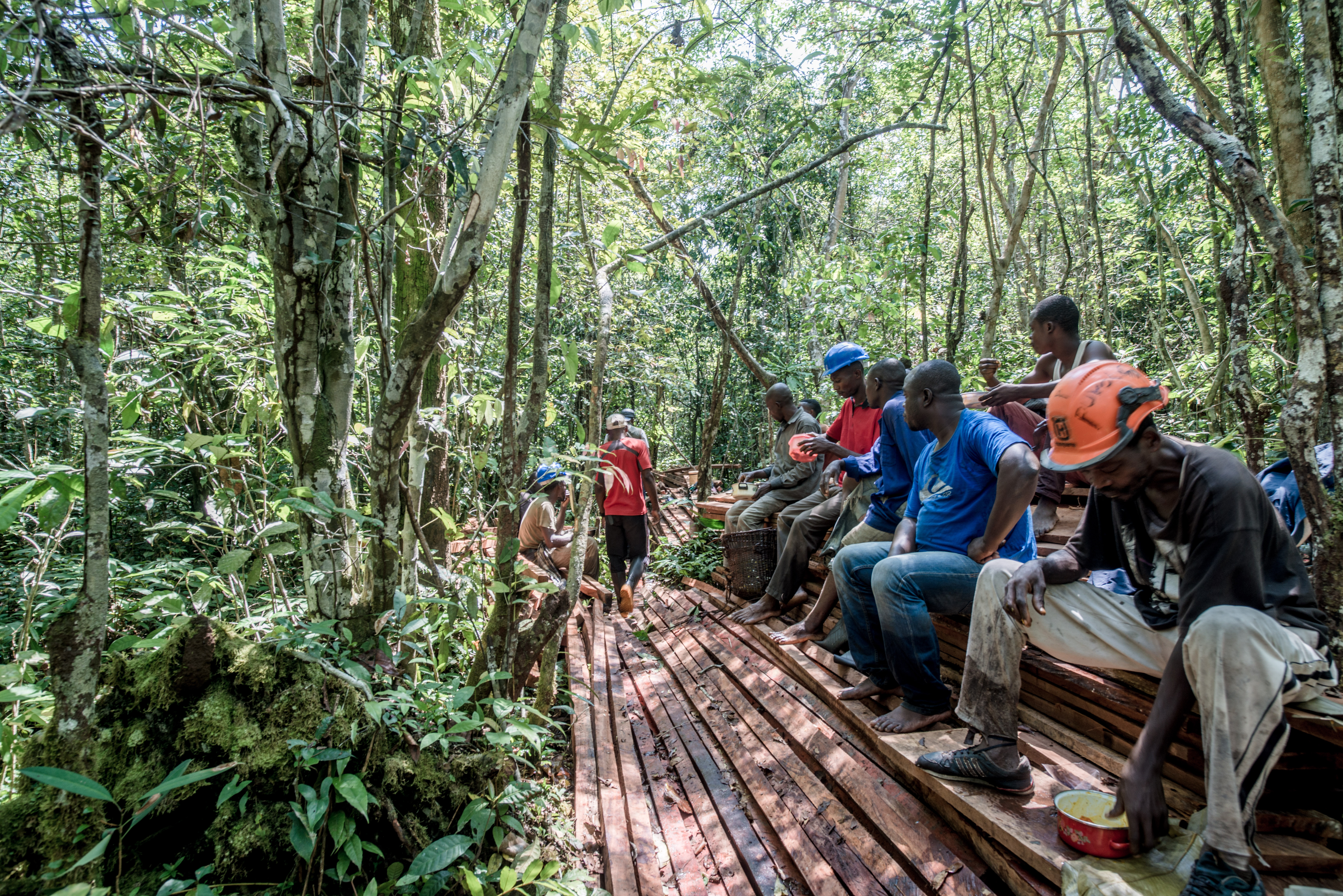 Workers take a break from constructing the boardwalk between Lokofa and Bekalikali Bai in Salonga National Park, DRC. This boardwalk will make it easier for researchers and visitors to travel between the two sites. (Photo courtesy of WWF)
