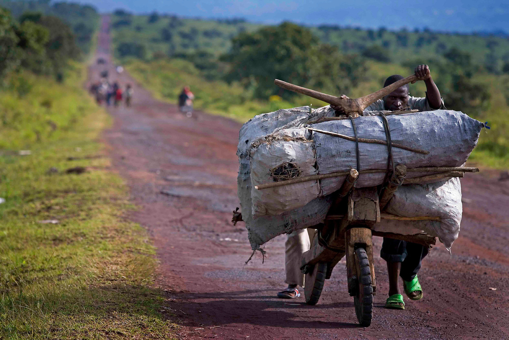 A man transports bags of charcoal on a wooden bicycle in Virunga National Park, DRC. This road was once flanked by forests, but as the provincial capital of Goma has grown exponentially in recent decades, so has demand for charcoal, forcing sellers to travel even further afield to make it. Armed militia are among those profiting from this destructive trade. (© KateHolt / WWF-UK)